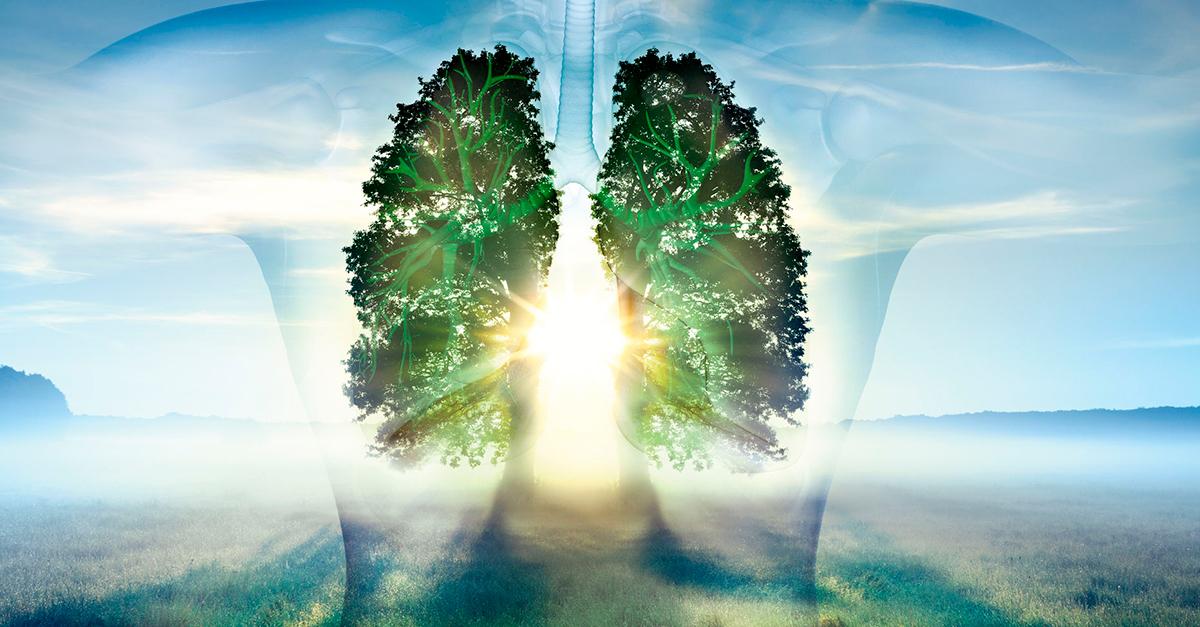Lungen-protektive Beatmung als Standardtherapie bei ARDS